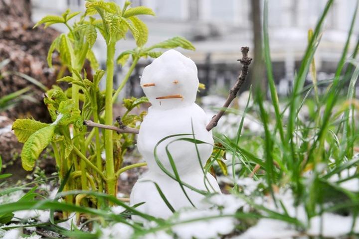 Теплая погода без осадков ожидается в Новосибирской области