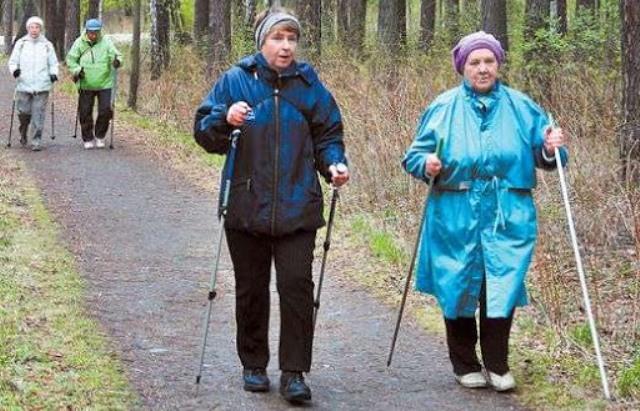 Чем палки для скандинавской ходьбы отличаются от лыжных?