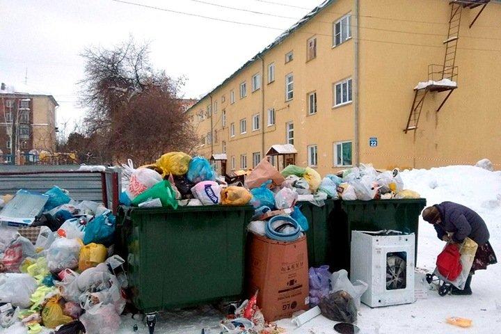 «Новосибирск мог бы возглавить движение переработки мусора». Власть и операторы пока не помогают
