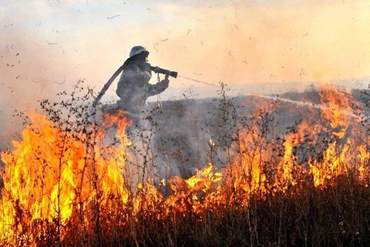 Десять домов сгорело после перехода палов на красноярские поселения