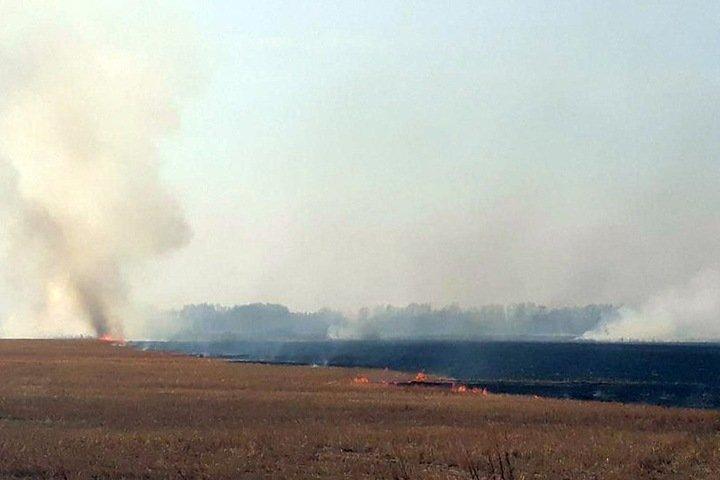 140 зданий сгорело после перехода пожаров на поселения в Новосибирской области и Кузбассе