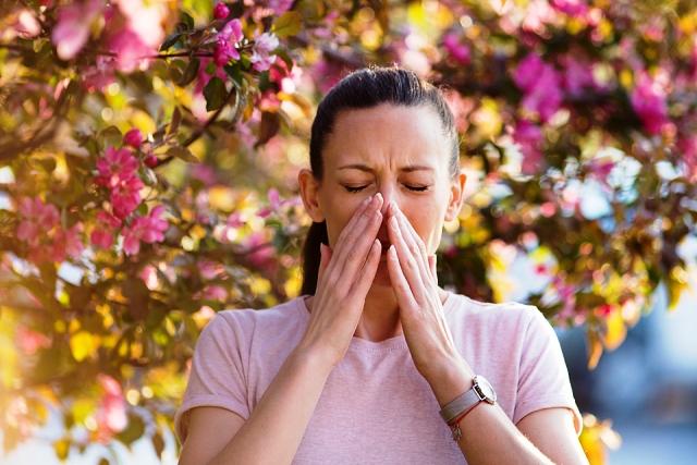 Может ли пыльца переносить коронавирус: отвечают вирусолог и аллерголог