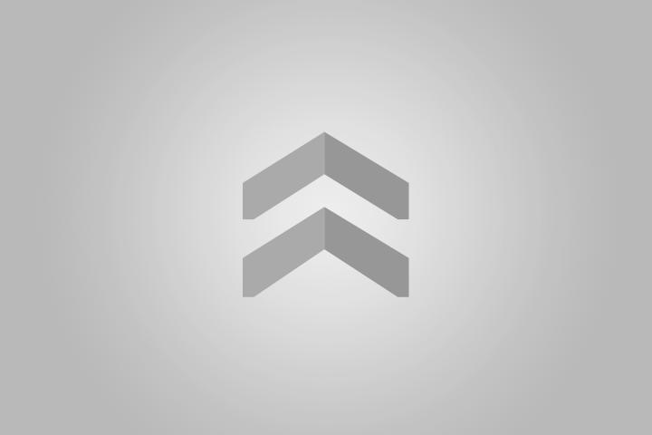 Актер Стивен Сигал прилетел в Бурятию на бизнес-джете. Фото