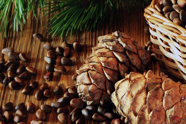 Числа недели: еще одна авария «Норникеля», экспорт алтайских орехов и худший регион для жизни