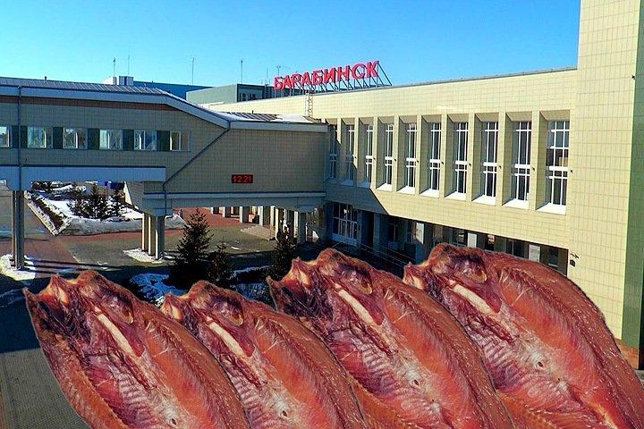 «Кофе на штанах, язи в руках»: как жителей Барабинска судят за избиение полиции копченой рыбой