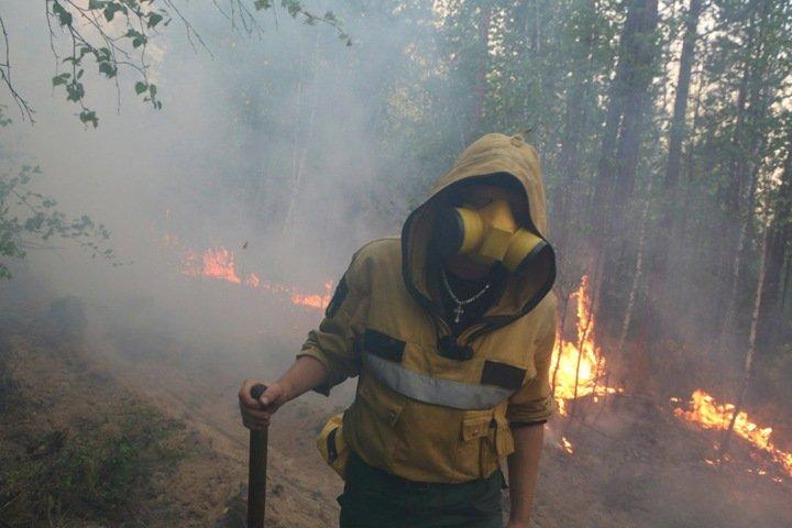 Рекордные лесные пожары прогнозируют регионам Сибири