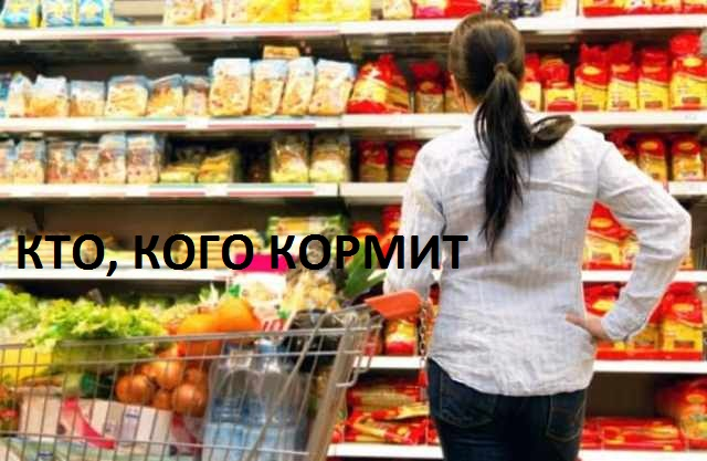 Цены, пенсии, зарплаты: чем Беларусь Лукашенко отличается от Украины Зеленского