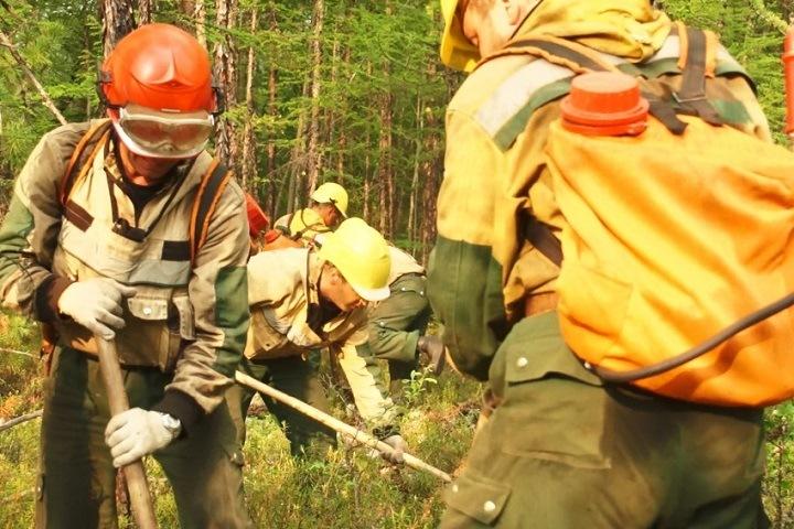 Площадь лесных пожаров в Приангарье выросла на 36% за сутки