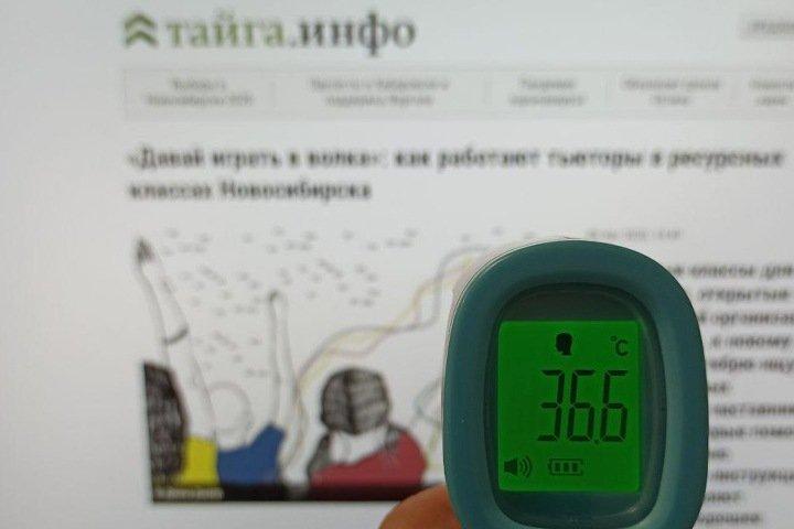 Новосибирская школа попросила родителей купить бесконтактные термометры и дезинфектанты к 1 сентября