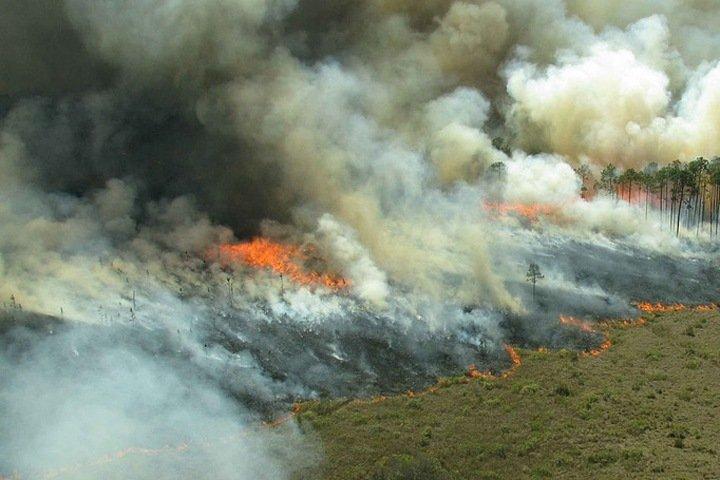 Тепловые аномалии выявили в почве на севере Сибири после природных пожаров