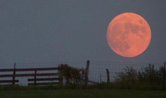 Виновата иллюзия: почему Луна у горизонта кажется больше
