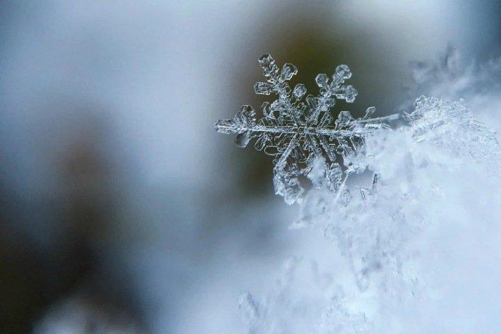 Похолодание до -11 и снег ожидаются в Новосибирской области
