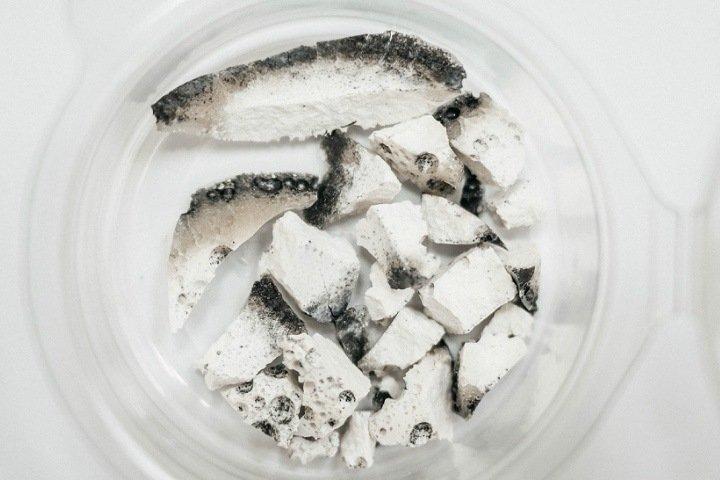 Томские ученые создали замену бурому углю из торфа и отрубей