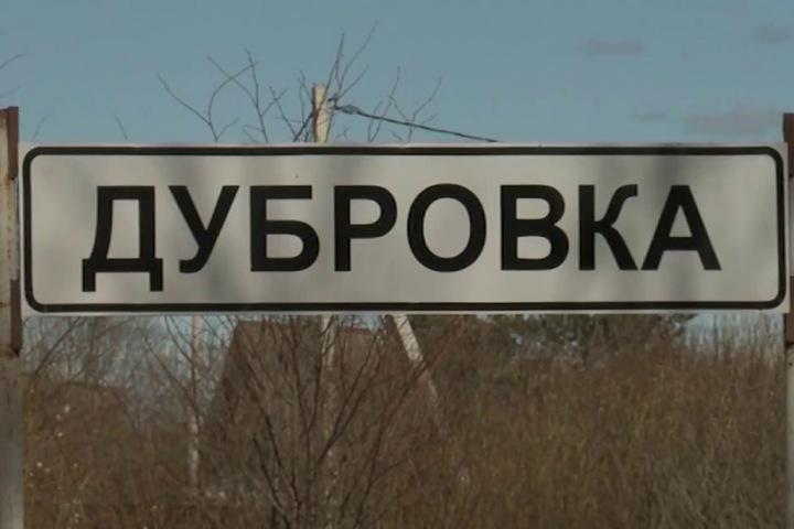 Трех подростков подозревают в разгроме нового кладбища под Новосибирском