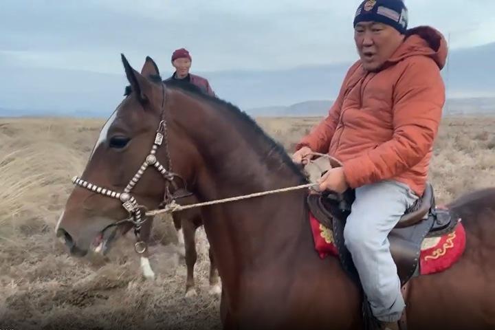Глава Тувы рассказал о потере любимого коня