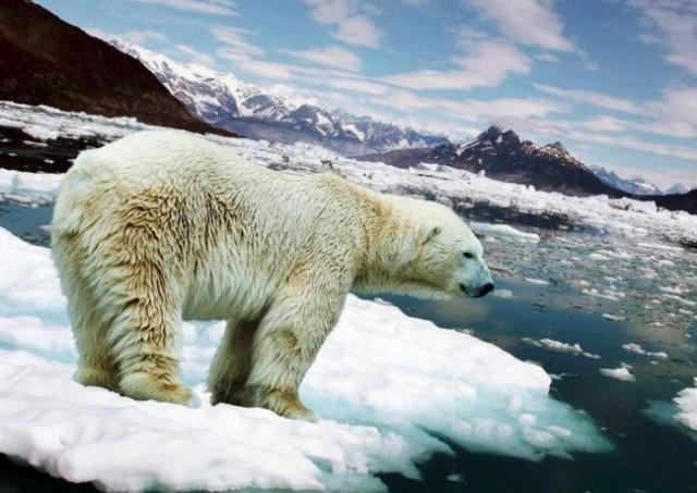 Тепловой удар по экономике: чем грозит глобальное потепление