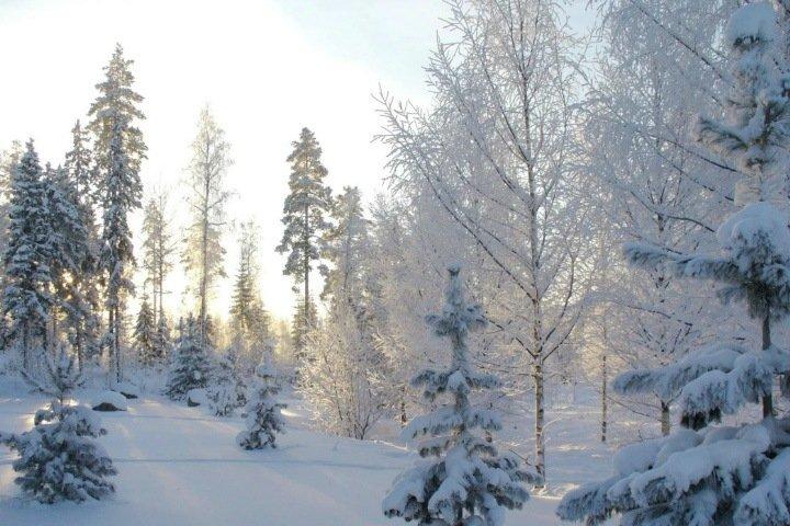 Аномальный холод ожидается в Западной Сибири