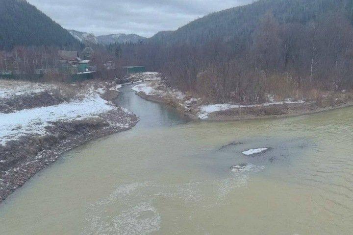 Красноярская река стала зеленой после загрязнения