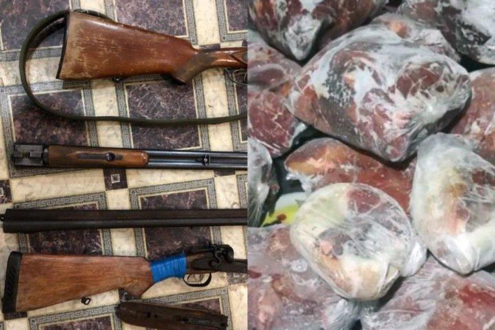 Группу продававших мясо новосибирских бранконьеров обвинили в убийстве 14 лосей