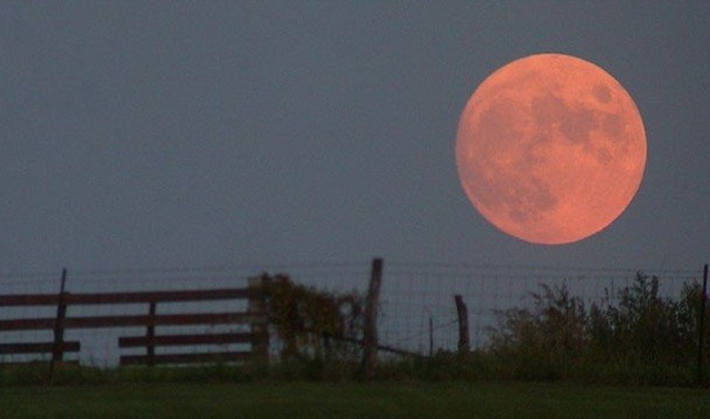 Китайцы заселят Луну. Каким будет 1-й лунный город