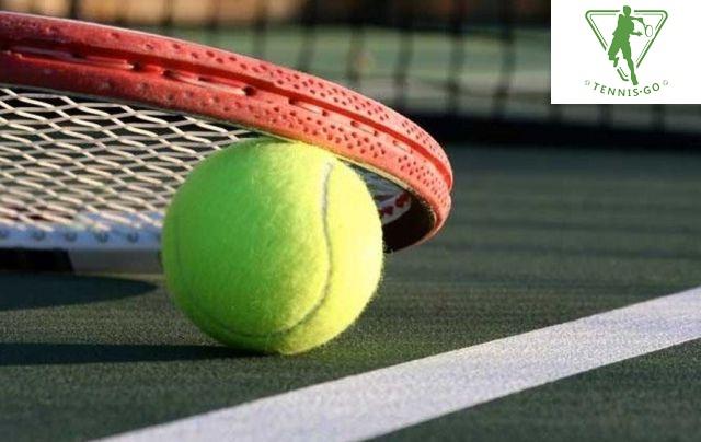 Победный сет: теннисные мячи – особенности и характеристики