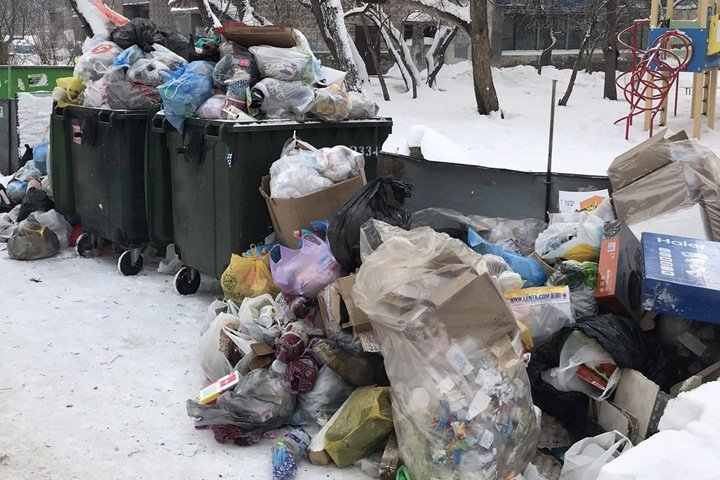 «Экология-Новосибирск»: жалоб на вывоз мусора стало меньше