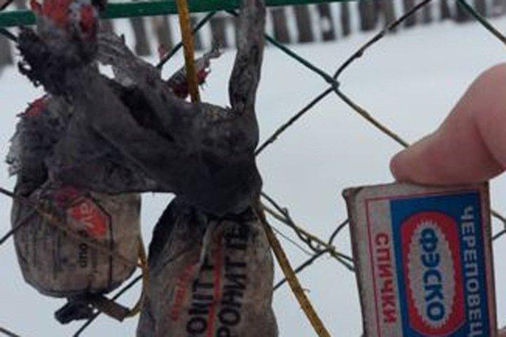 Жительница Новосибирской области купила уголь для печи со взрывчаткой
