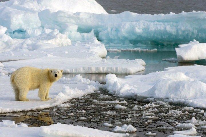 Миллион рублей за загрязнение Арктики и рекордные пробки в Новосибирске. Числа недели
