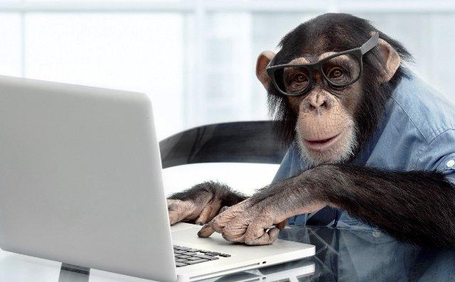 Чип в мозге: Илон Маск рассказал о чипировании обезьяны