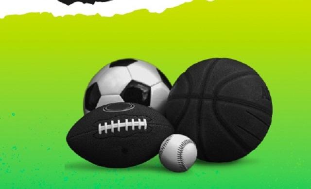 Прибыльный спорт: выгодная партнерская программа