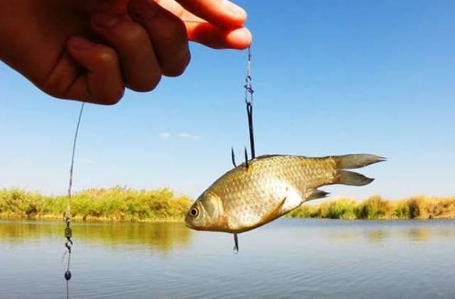Календарь рыбака на 2021 год: благоприятные и неблагоприятные дни для ловли рыбы