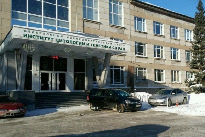 СО РАН пообещало «внести коррективы» в предложения Минобрнауки после жалоб на зарплату новосибирских ученых