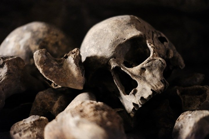 Эпидемия чумы могла уничтожить цивилизации в Сибири