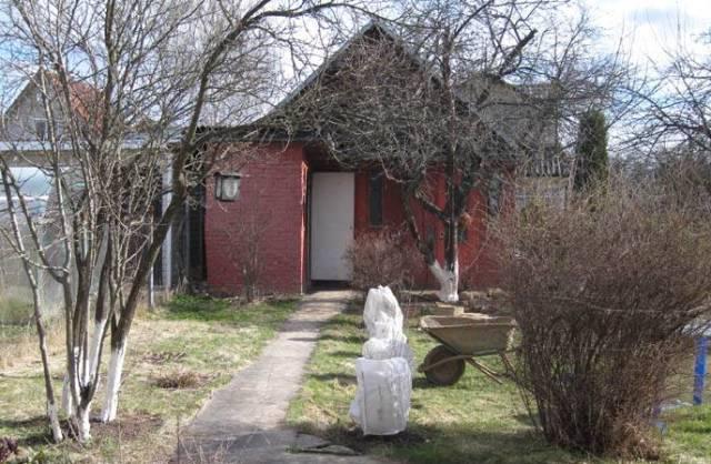 Какие садовые работы нужно сделать в апреле