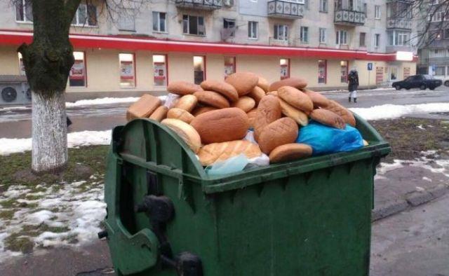 17% на свалку: почему выбрасывают продукты