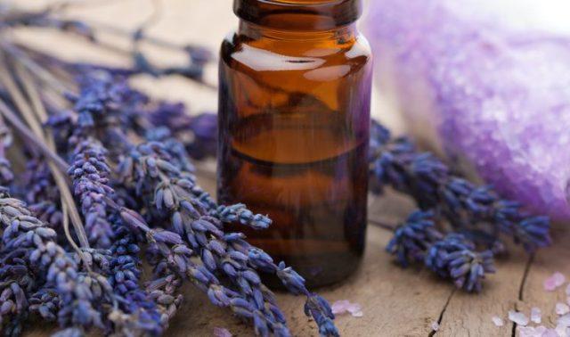 Эксперты считают, что лавандовое масло помогает от головной боли и плохого настроения