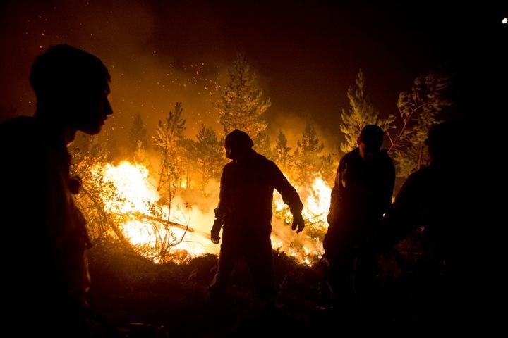 Доступ в леса Забайкалья запретили из-за пожароопасной ситуации
