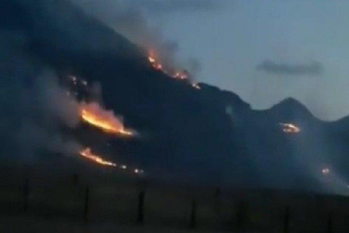 Тайга загорелась на Алтае
