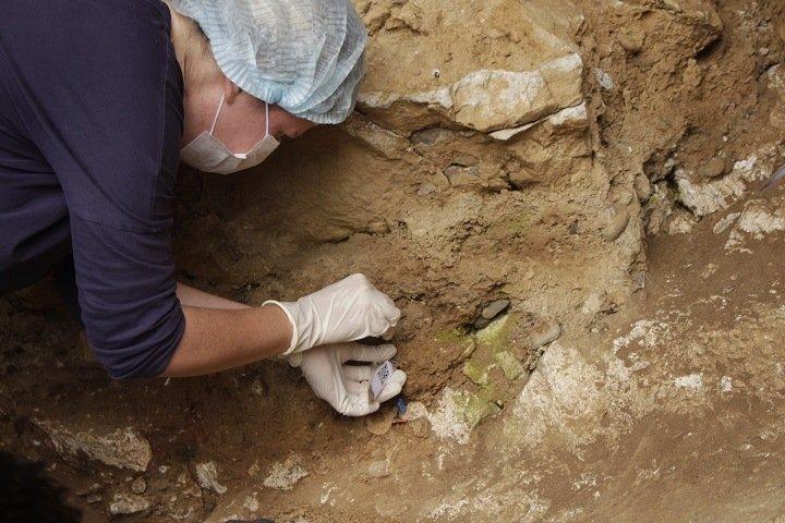 Сибирские ученые впервые извлекли ядерную ДНК неандертальцев со дна пещеры