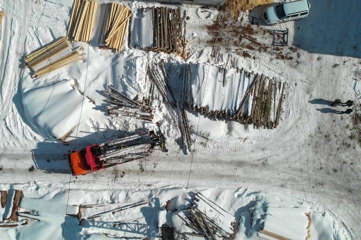 Экологи не спасают лес, а очерняют работающих там людей: алтайский бизнесмен о лесозаготовках
