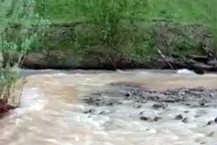 Жители рассказали о загрязнении рек золотодобытчиками в Кузбассе и Хакасии