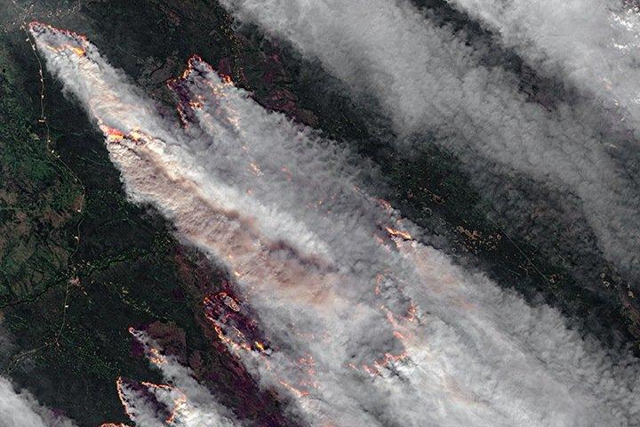 Природные пожары в Сибири стали источником рекордного загрязнения атмосферы