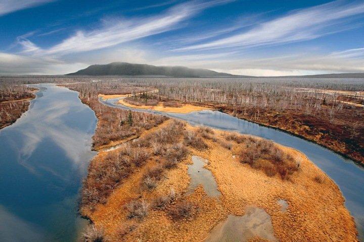 Сколько стоит ущерб сибирской природе и кто не платит налоги. Числа недели