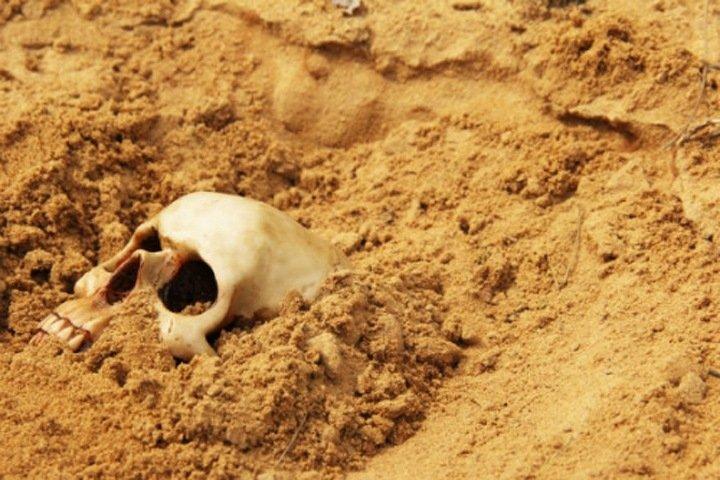 Скелет нашли на берегу Катуни в Горном Алтае