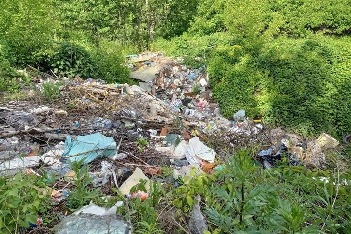«Я ему на голову ведро помойное надену»: новосибирские депутаты вновь раскритиковали ситуацию с вывозом мусора в регионе