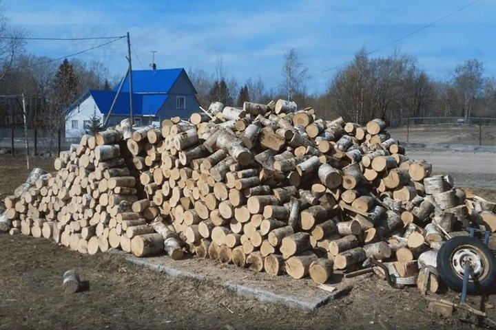 Глава Забайкалья списал подорожание дров на аппетиты бизнеса и лесные пожары