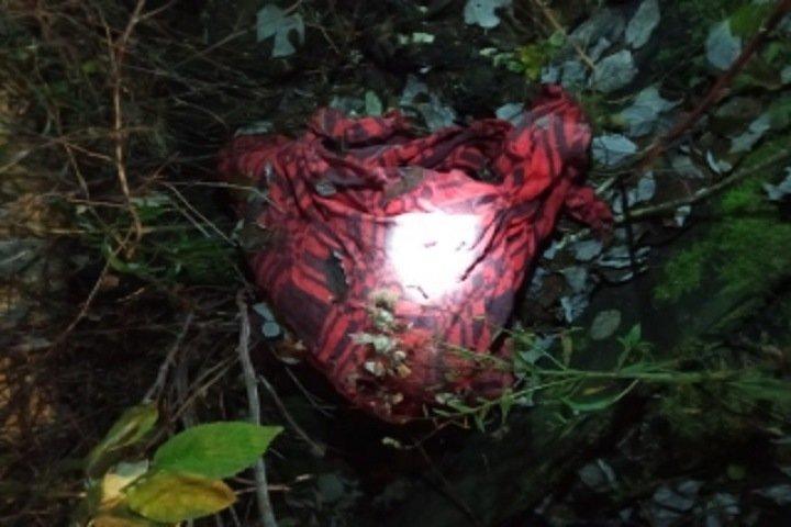 20-летнюю девушку нашли расчлененной в Красноярском крае. В убийстве обвиняют ее мужа