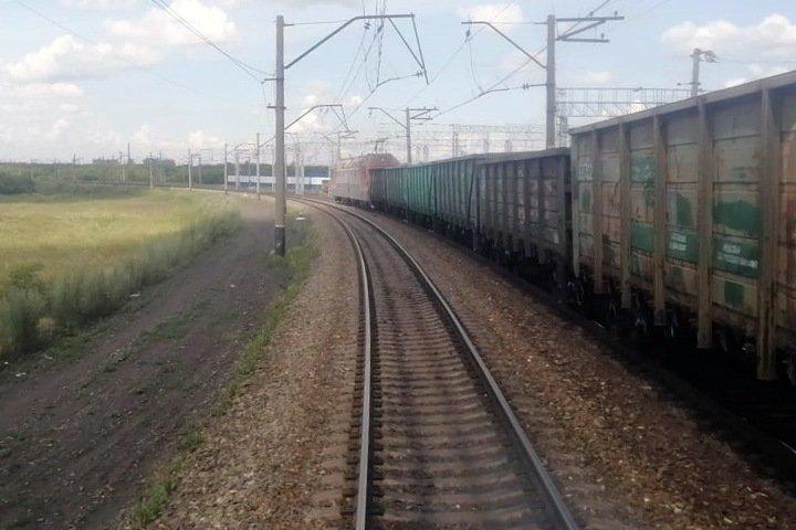 Поезд врезался в табун лошадей в Кузбассе