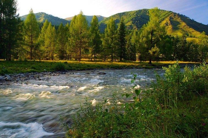 Алтай, Хакасия и Тува: где провели лето сибиряки
